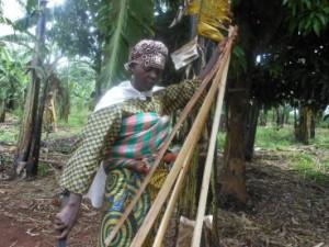 angelique-karidi-a-farmer-extracts-banana-fiber-from-the-trunk-of-a-banana-tree