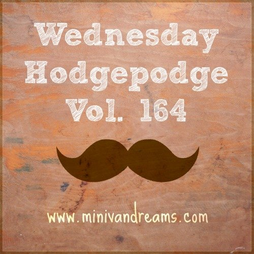 Wednesday Hodgepodge Vol. 164 via Mini Van Dreams #wednesdayhodgepodge #wedensdaybloghops