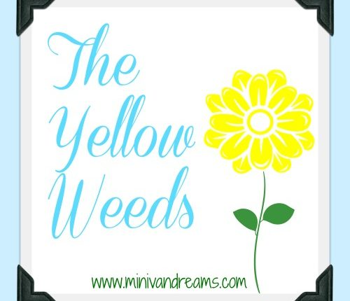 The Yellow Weeds via Mini Van Dreams #familymemories #funnyfamilystories
