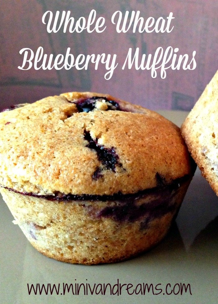 Whole Wheat Blueberry Muffins | Mini Van Dreams