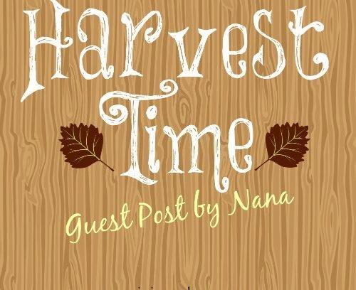 Harvest Time | Guest Post by Nana via Mini Van Dreams #nanascorner #everydaylife #guestpost