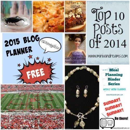 Top 10 Posts of 2014 at Mini Van Dreams! Come check it out!