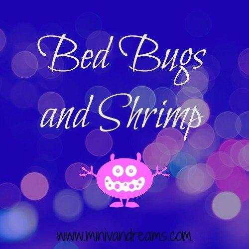 Bed Bugs and Shrimp | Mini Van Dreams