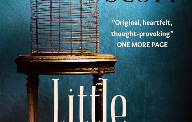 Little Sacrifices by Jamie Scott   A Book Review