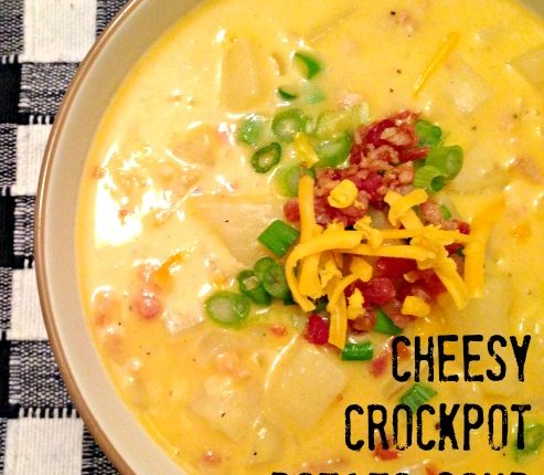 Cheesy Crockpot Potato Soup   Mini Van Dreams