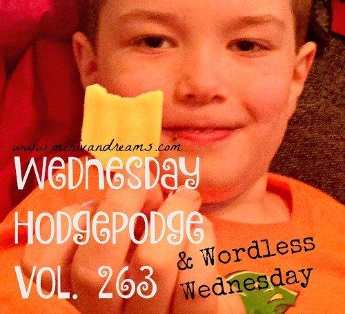 Wordless Wednesday Vol. 263   Mini Van Dreams