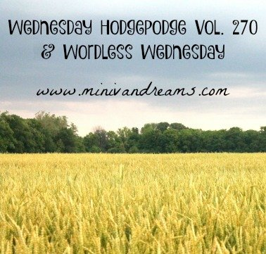 Wednesday Hodgepodge Vol. 270 | Mini Van Dreams