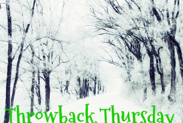 Throwback Thursday: Damnit! | Mini Van Dreams