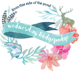 Wednesday Hodgepodge Vol. 330 | Mini Van Dreams