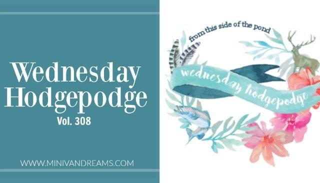 Wednesday Hodgepodge Vol. 308   Mini Van Dreams