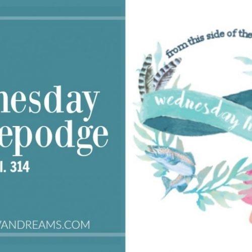 Wednesday Hodgepoge Vol. 314   Mini Van Dreams