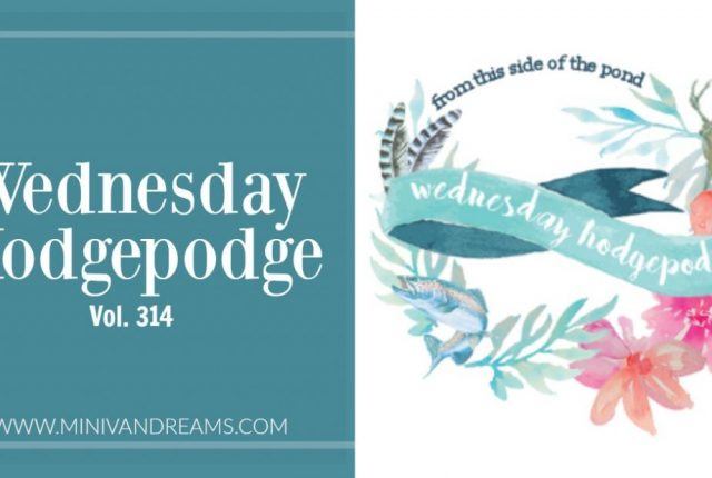 Wednesday Hodgepoge Vol. 314 | Mini Van Dreams