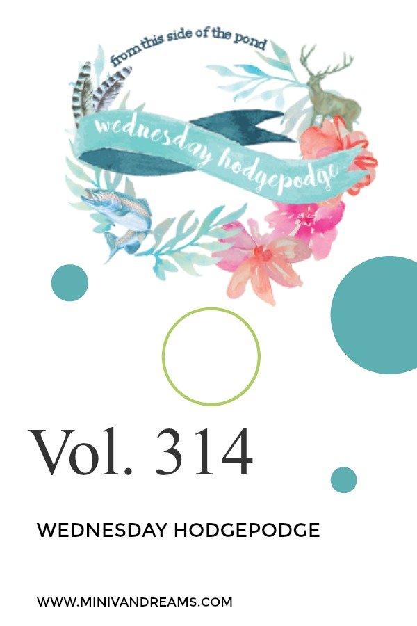 Wednesday Hodgepoge Vol. 314 | Mini Van Dreams