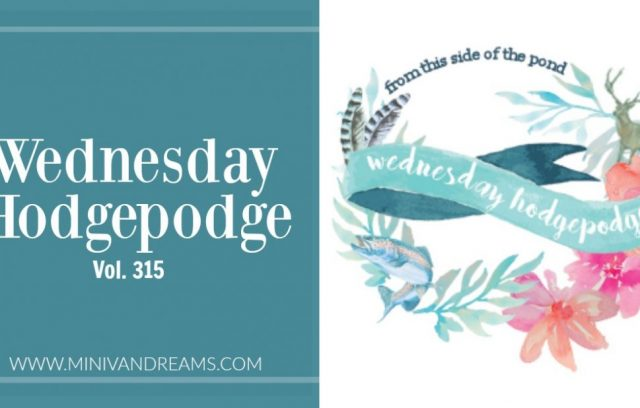 Wednesday Hodgepodge Vol. 315 | Mini Van Dreams