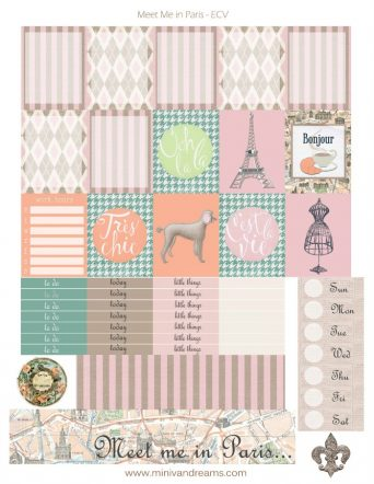 Free Printable Planner Stickers: Meet Me in Paris | Mini Van Dreams