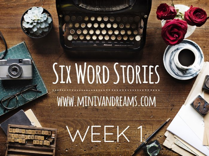 Six Word Stories: Week 1 Recap | Mini Van Dreams