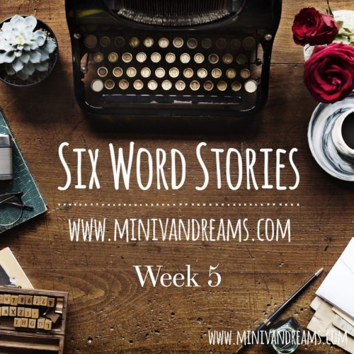 Six Word Stories: Week 5 Recap | Mini Van Dreams