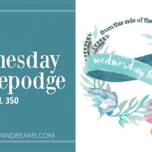 Wednesday Hodgepodge Vol. 350 | Mini Van Dreams
