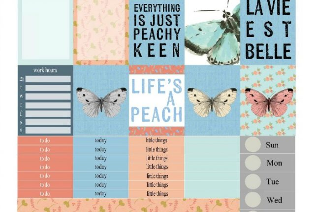 Free Printable Planner Stickers: Peachy Keen | Mini Van Dreams