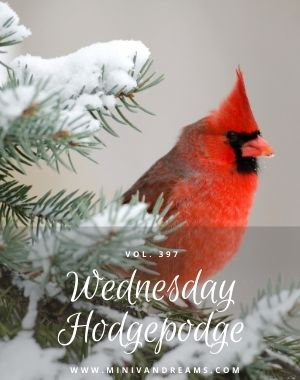 Wednesday Hodgepodge Vol. 397 | Mini Van Dreams